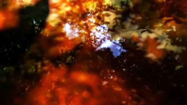 The Michaela Grill Experience – BAFICI 16º